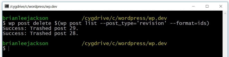 WP-CLI delete WordPress revisions